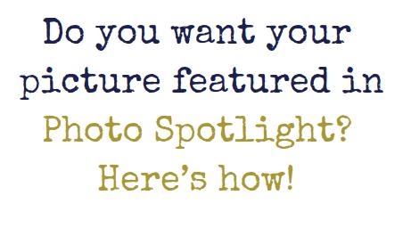 Introducing Photo Spotlight!