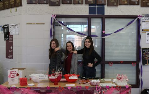 Fashion Club sells and delivers cake pops