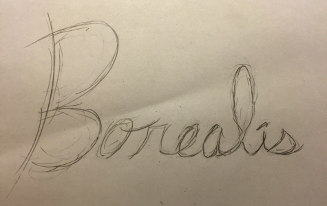 Borealis still wants your creative work for its spring publication