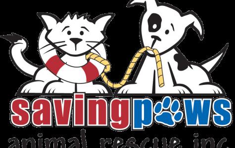Appleton North's animal-loving club